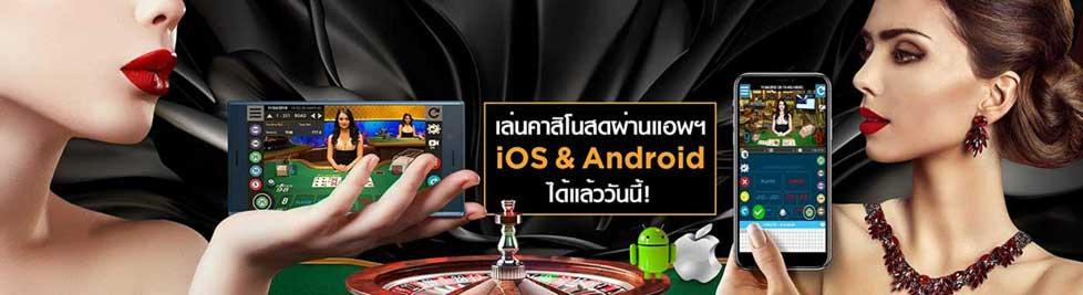 ดาวน์โหลด Alpha88 Mobile Application